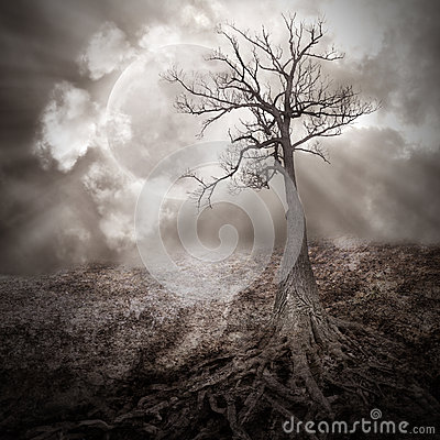 Free Lonely Tree With Roots Holding The Moon Royalty Free Stock Image - 29798076