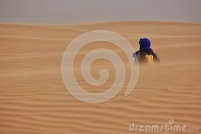 Lonely Wanderer Stock Photo - Image: 26475570