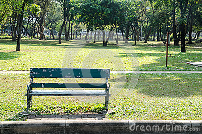 Lonely wooden bench in the park