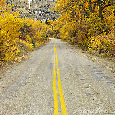 Free Lonesome Road Royalty Free Stock Photo - 2046415