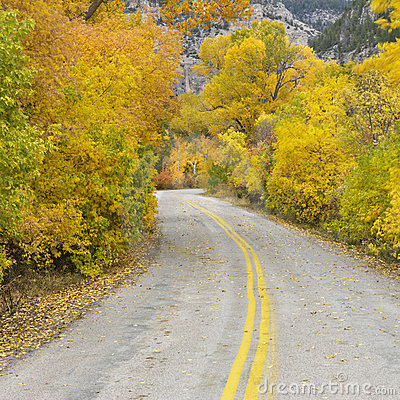 Free Lonesome Road Royalty Free Stock Photography - 2046417