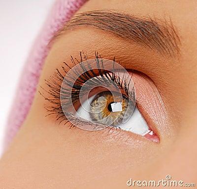 Free Long, Black And Beauty Eyelashes Royalty Free Stock Images - 3770219