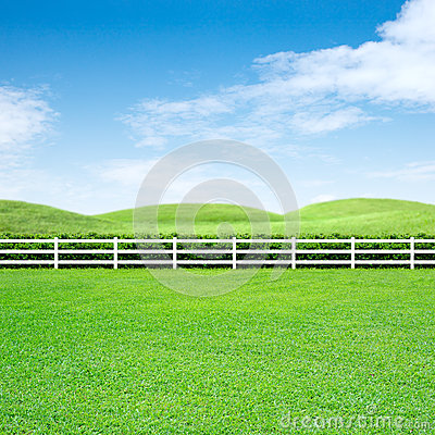 Long fence and green grass