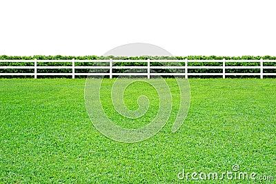 Long fence on white