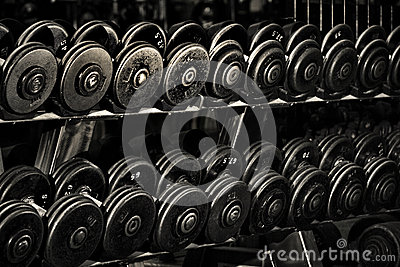 Row of Hand Barbells
