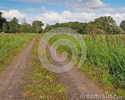 A long sandy road