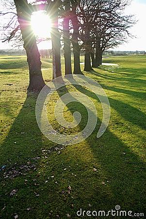 Free Long Shadows Royalty Free Stock Photo - 12785315
