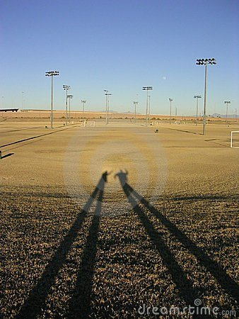 Long shadows on dead field