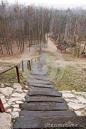 Long stairs in forest