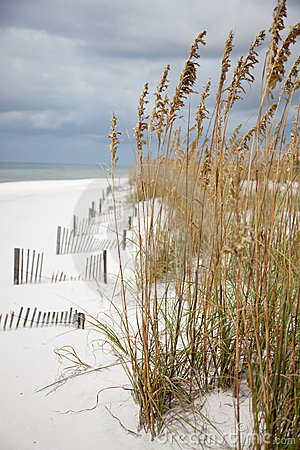A long White sandy coastline