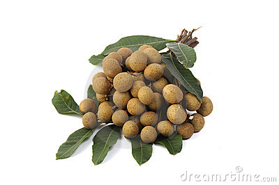 Longan fruit isolated on white background