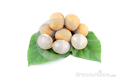 Longan of fruit and Leaves tree.