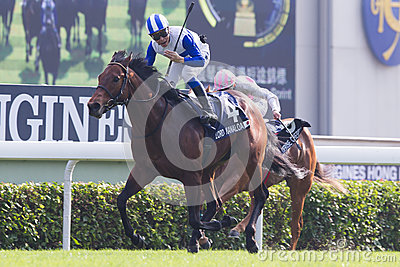 LONGINES Hong Kong Sprint : Lord Kanaloa Editorial Stock Photo