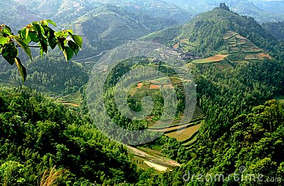 Longsheng, China: Mountainside Rice Paddies