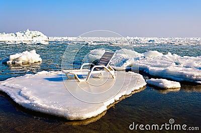 Longue en la masa de hielo flotante