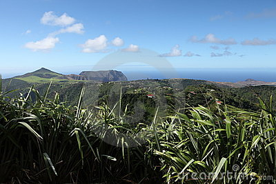 Longwood district and east landscape of St Helena