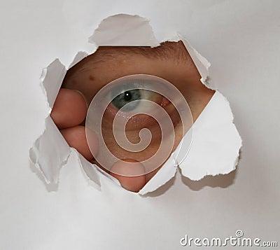 the human eye essay
