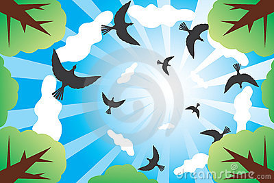 Look at sunny sky with birds and clouds from down.