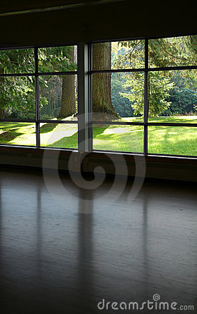 Free Look Through A Window Royalty Free Stock Image - 1175756