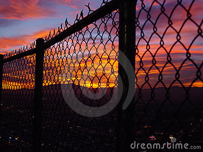 Looking from prison