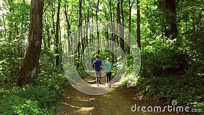Lopende jogging in bosvrouw opleiding, het lopen, het aanstoten, geschiktheid, agent-4k video stock video