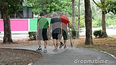 Los más viejos hombres que caminan el ejercicio para la salud en el parque de BangYai, Nonthaburi en Tailandia 2 de junio de 2019 metrajes