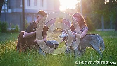 Los pares preciosos jovenes acarician su reconstrucción de los perros al aire libre en la puesta del sol almacen de metraje de vídeo