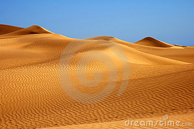 Lost in the desert?