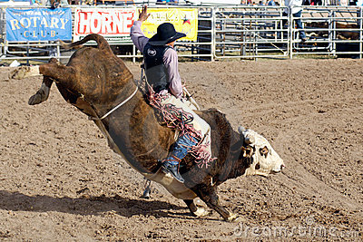 Lost Dutchman Days Rodeo Editorial Photo Image 8485176