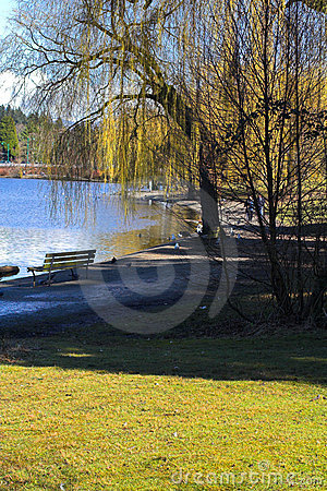 Free Lost Lagoon Stock Image - 586491