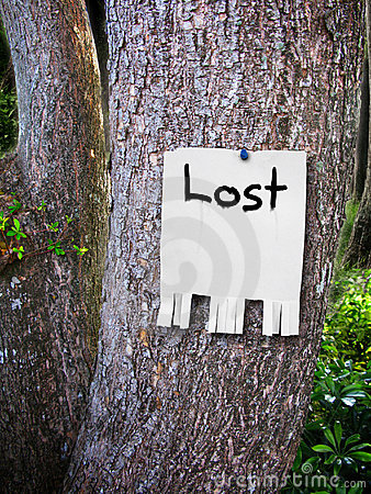 Free Lost Sign Royalty Free Stock Image - 5137786