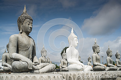 Lot of Buddha Statue