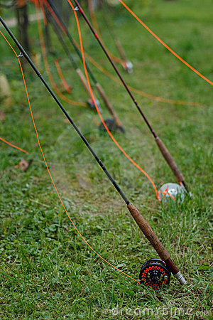 Lot of fly fishing rods