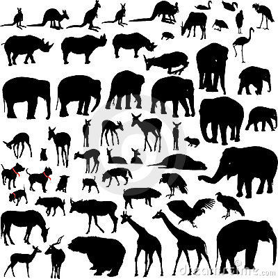 Lots of Animal silhouettes