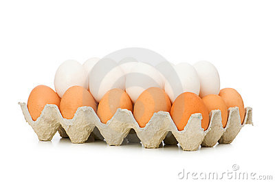 Lots of eggs in the carton