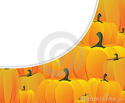 Lots of ripe pumpkins