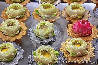 Lotus for Buddha