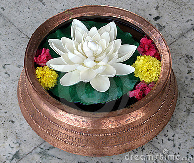 Lotus in Copper Vase