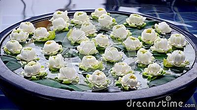 Lotus decorate