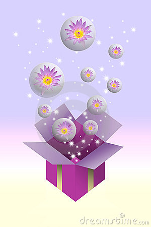 Lotus flower in bubble and gift box