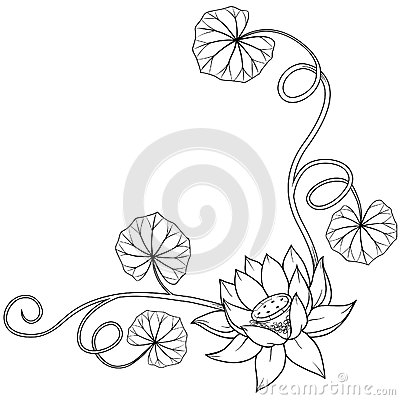Lotus Flower Curly Frame Corner With Leaves Stock Photography Image