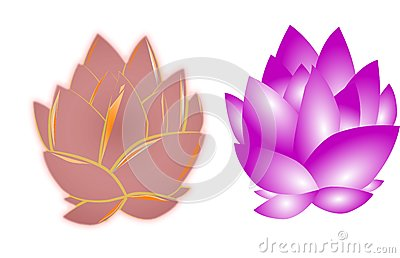 Lotus flowers on white