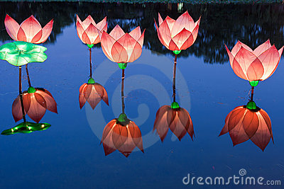 Lotus light in pond