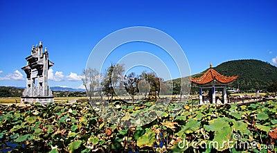 Lotus Park