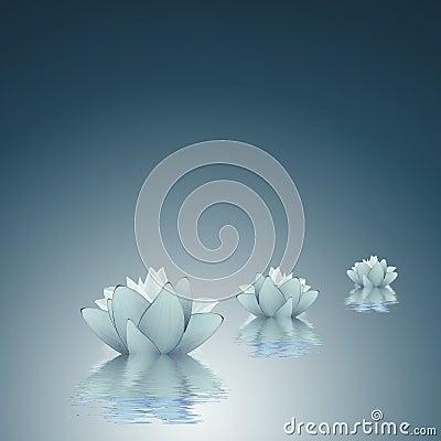 Free Lotus - Purity Background Royalty Free Stock Image - 31737466