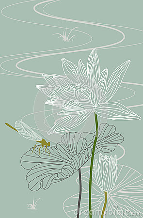 Lotus. Waterlily. Dragonfly. Vector. Illustration
