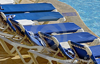 Lounge Chairs Lined up at Pool s Edge