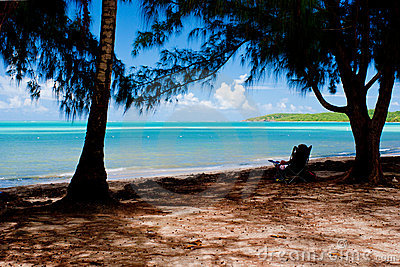 海滩lounging的海运七