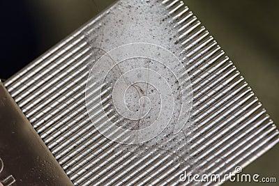 Louse comb