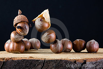 Love among acorns